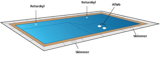 Pool anatomi